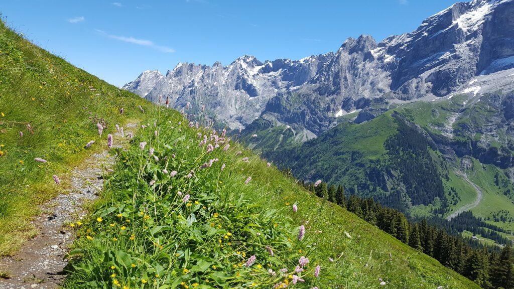 Wanderweg von der grossen Scheidegg zur Rosenlaui
