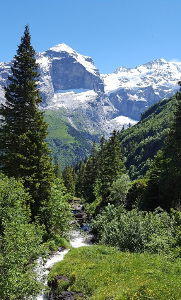 Panorama-Weg von grossen Scheidegg aus