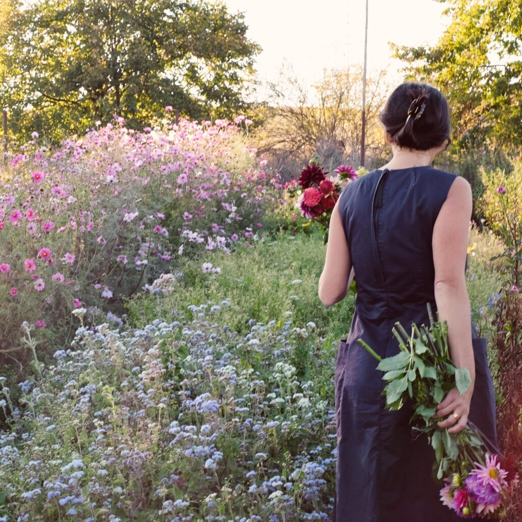 Jora Dahl Blumen ernten
